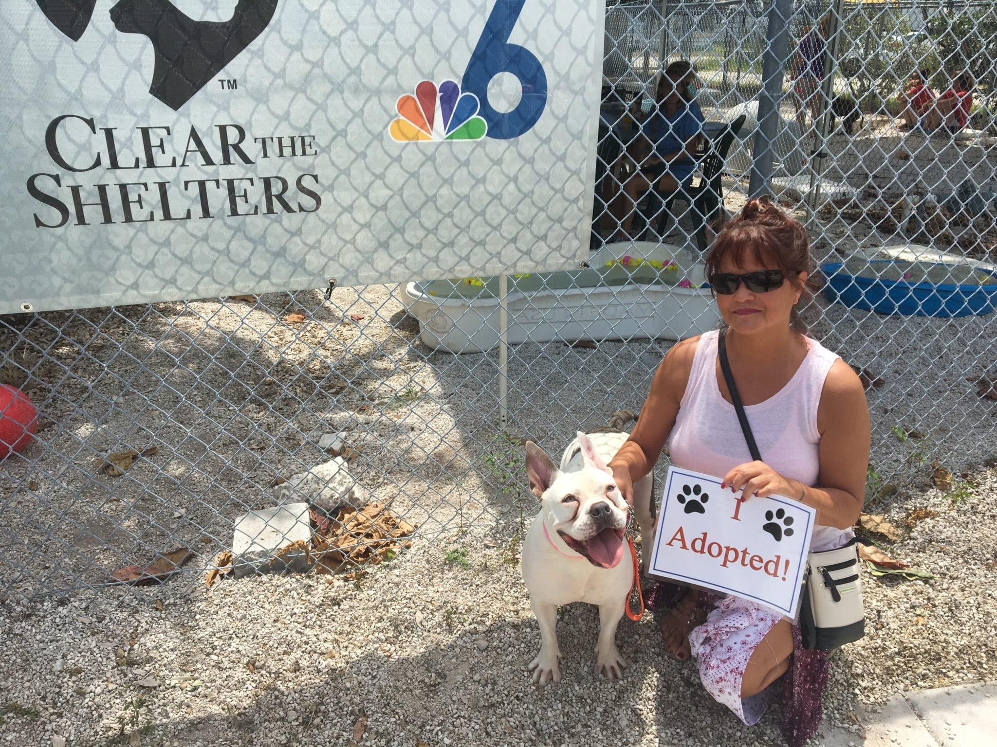 Florida Keys SPCA | Florida Keys SPCA, The Center for Animal Welfare
