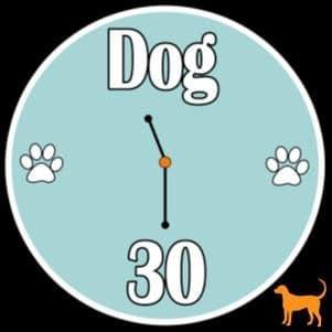 https://fkspca.org/wp-content/uploads/2020/11/dog-30.jpg